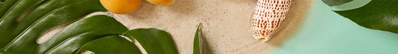 Sand und Muschel